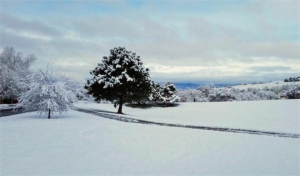 October Snow in Colorado Springs