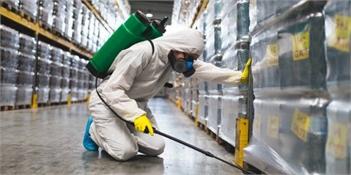 Best Pest Control Company in Colorado Springs