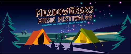 10th Annual MeadowGrass Music Festival