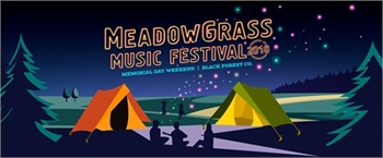 10th Annual MeadowGrass Music Festival